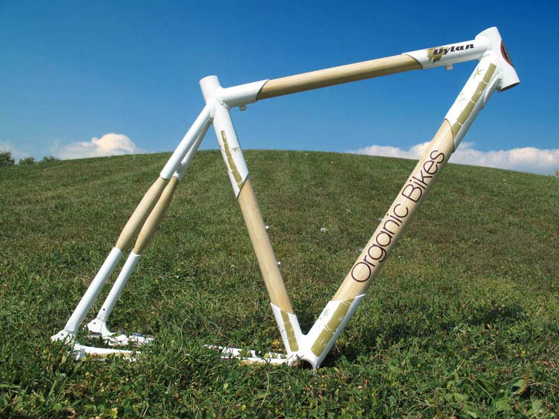 Can Commuting Get Any Greener?-dylan-frame-08.jpg