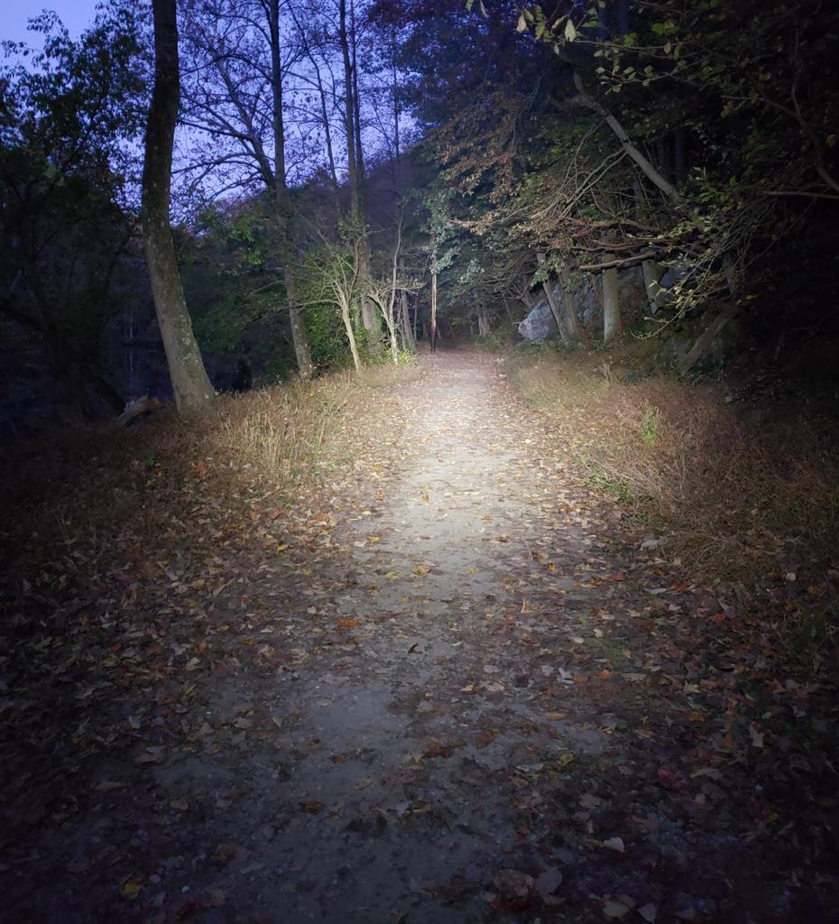 Just Received;  Fireflies E01 ( 10 / 2019 )-e01crop1000.jpg