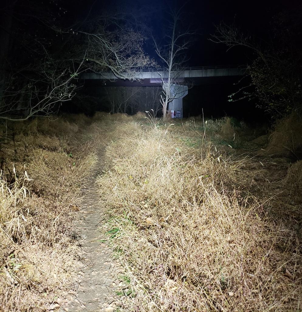 Just Received;  Fireflies E01 ( 10 / 2019 )-e01raveman1000.jpg