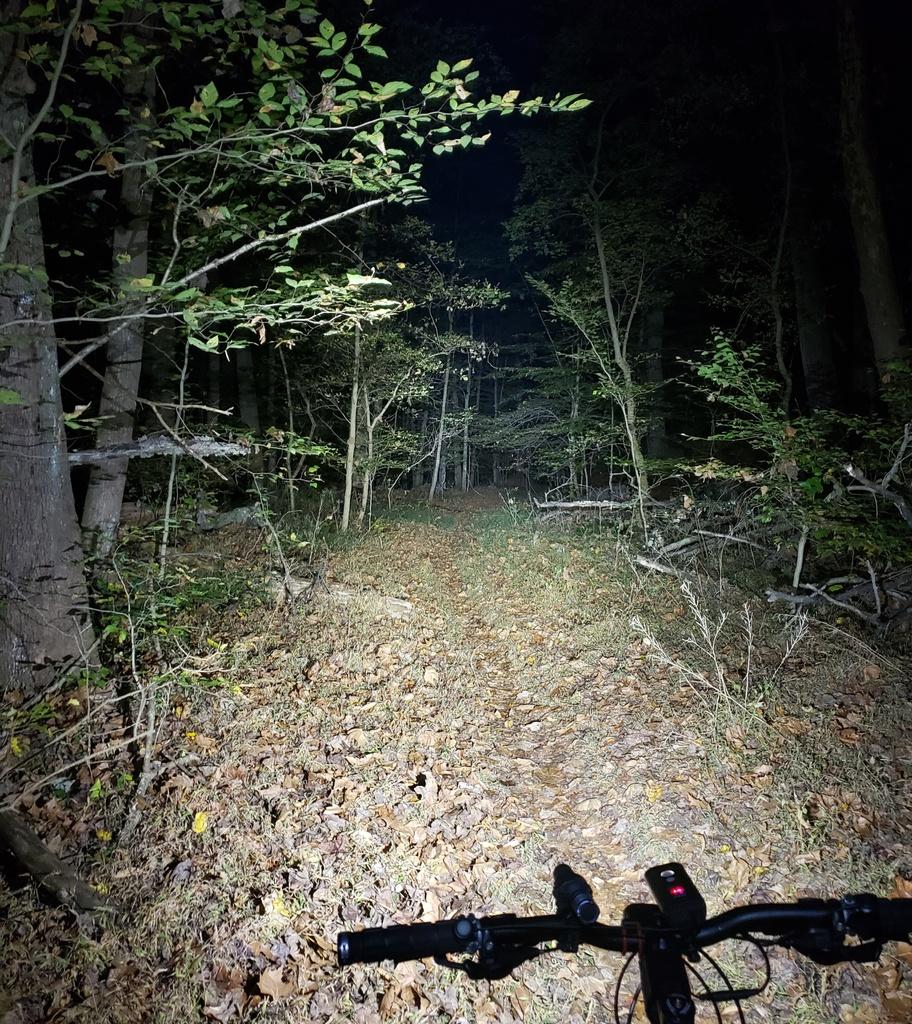 Just Received;  Fireflies E01 ( 10 / 2019 )-e01ravemntrail.jpg