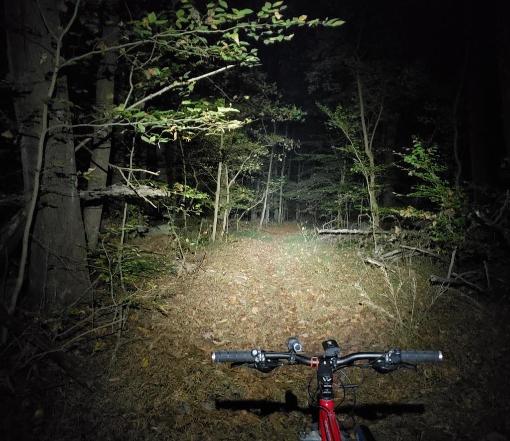 Just Received;  Fireflies E01 ( 10 / 2019 )-e01trail500.jpg