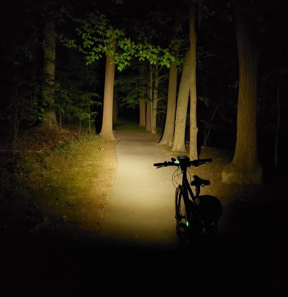 Just Received; Fireflies E07 ( 5/20)-e07low.jpg