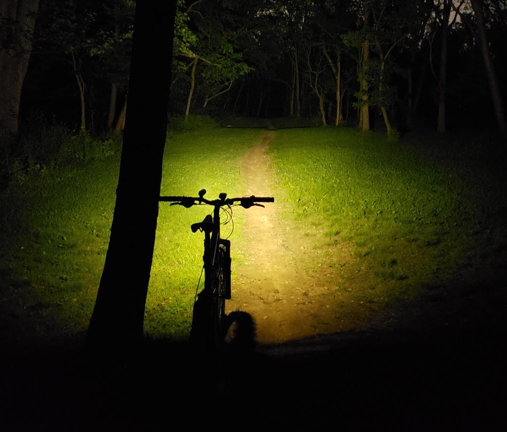 Just Received; Fireflies E07 ( 5/20)-e07trail4.jpg