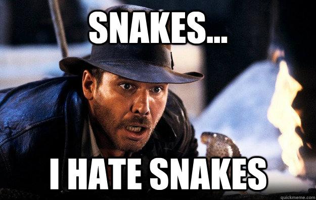 Overcoming fear of Snakes?-e1ae5bd7d8484e806318a7bc6ed5cd1f06b8f759af0a264c9ccf19e276d181df.jpg