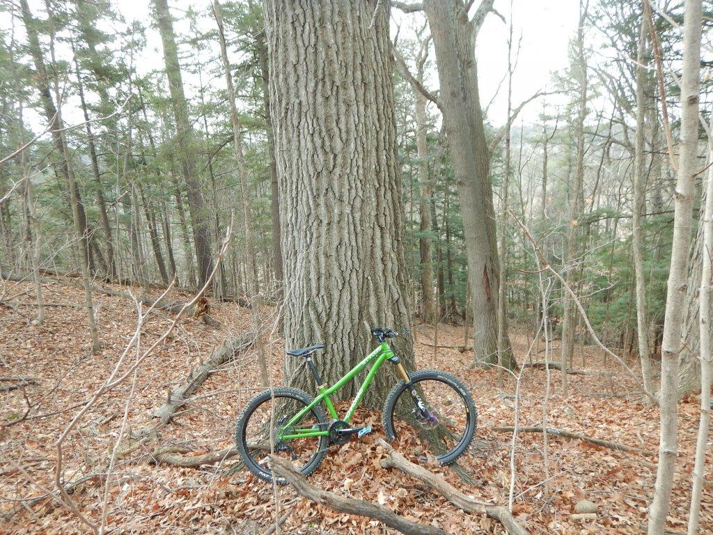 Local Trail Rides-e4surm9.jpg