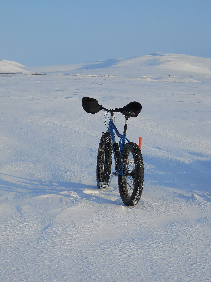 Daily fatbike pic thread-eat-your-crust.jpg