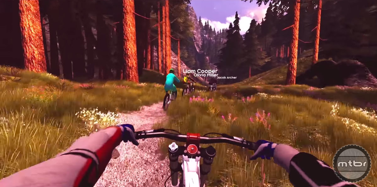 MTB Simulator Bike