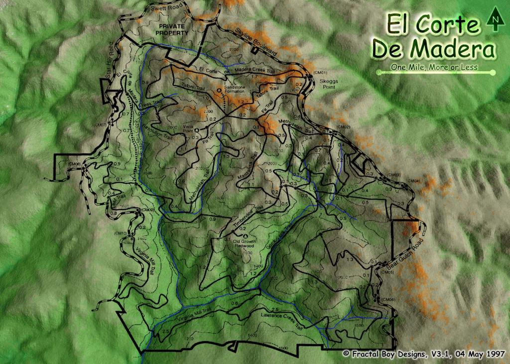Skegg's circa 2001 or earlier-ecdm-hi.jpg