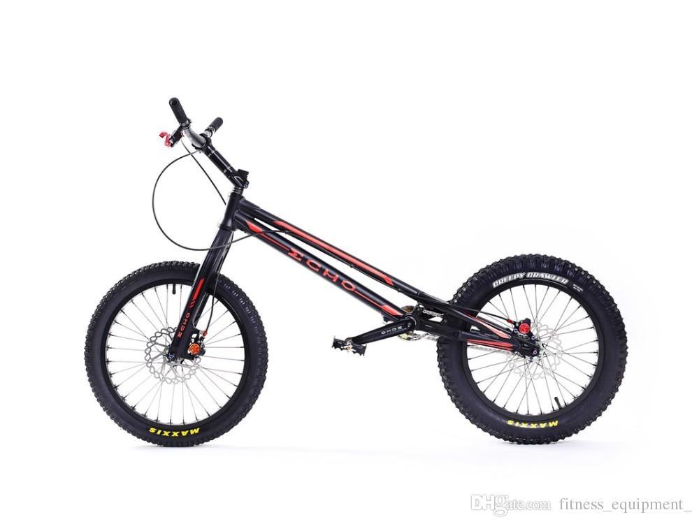 The Trials Bike Rabbit Hole-echo-20-inch-mark-ti-pro-complete-trial-bike.jpg