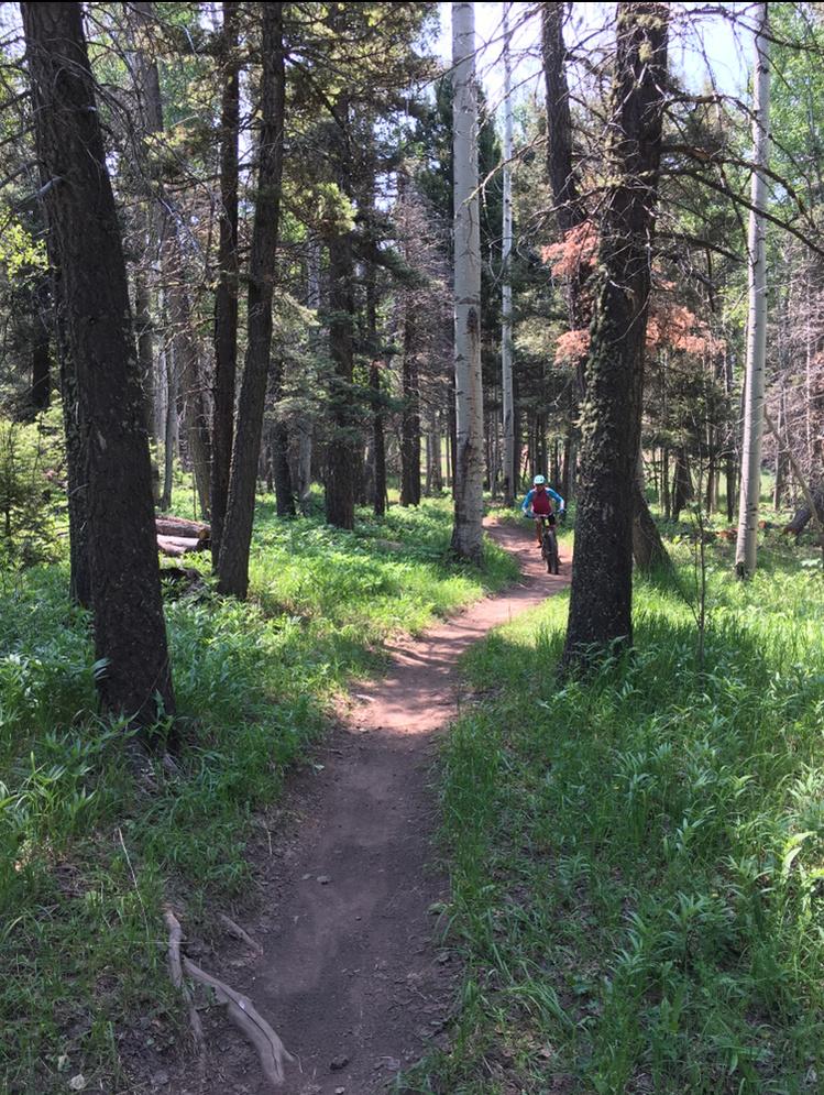 The NM Trail Pix Thread-ee1eef49-d238-4045-ae42-a837663efb07.jpg