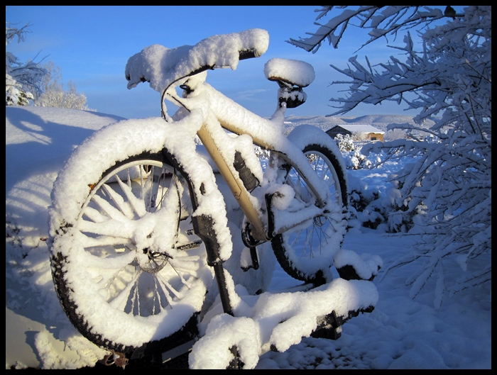I Miss Dirt-effing-snow-2.jpg