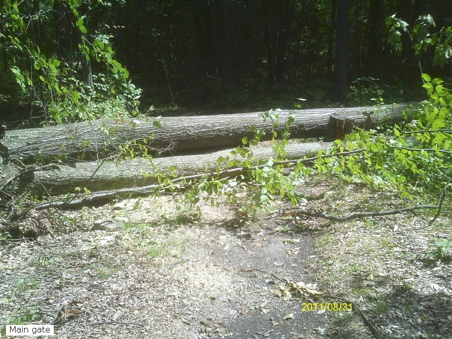 Moon Lake Trail damage reports here-eimag0079_900x900.jpg
