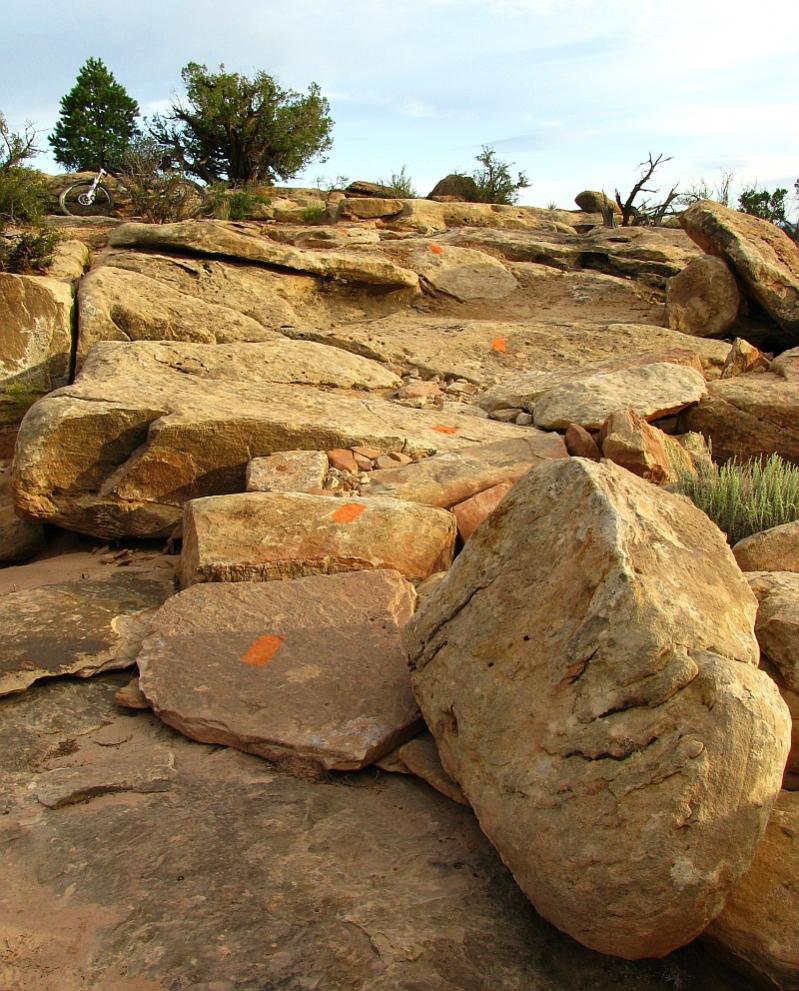 New Trail in Moab (EKG)-ekg-small-climb.jpg