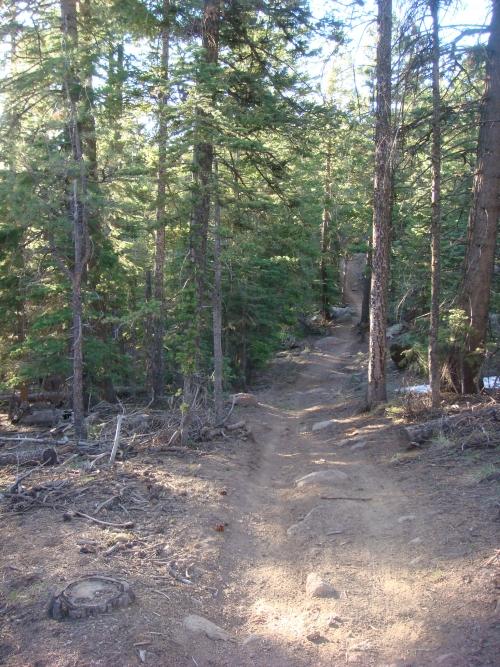 Flag Trail Updates-el3.jpg