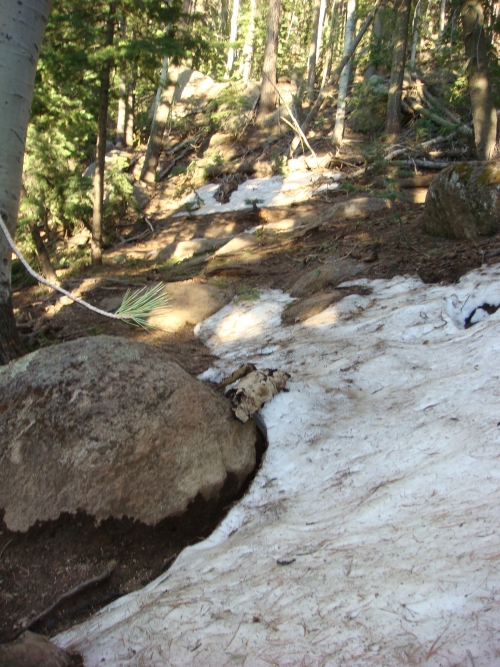 Flag Trail Updates-el4.jpg