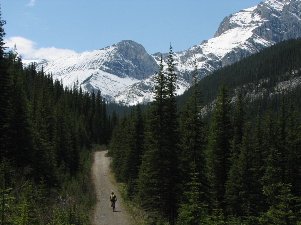 Why are MTBers so Obsessed with Trail Width ??-elbow-loop.jpg
