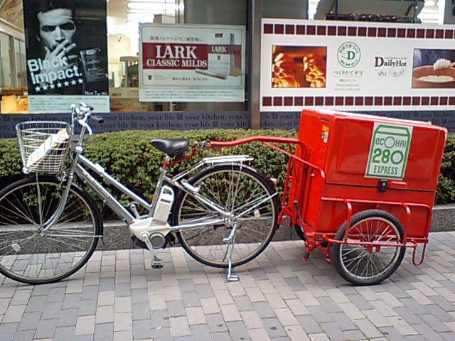 Trailers.........?-electric_bike_trailer.jpg