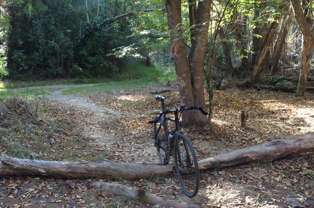 Cross Bikes on Singletrack - Post Your Photos-elwoodlog.jpg