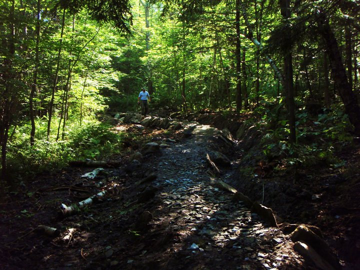 Transporting large rock over distance-enchanted-forest-turnpike2.jpg