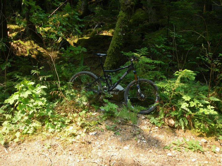 Knolly Endorphin:  Build Information, Photos and Set-up Thread-endo-squamish.jpg
