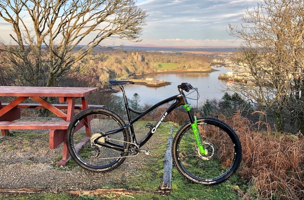 Canfield Brothers EPO Carbon 29er-epo4.jpg