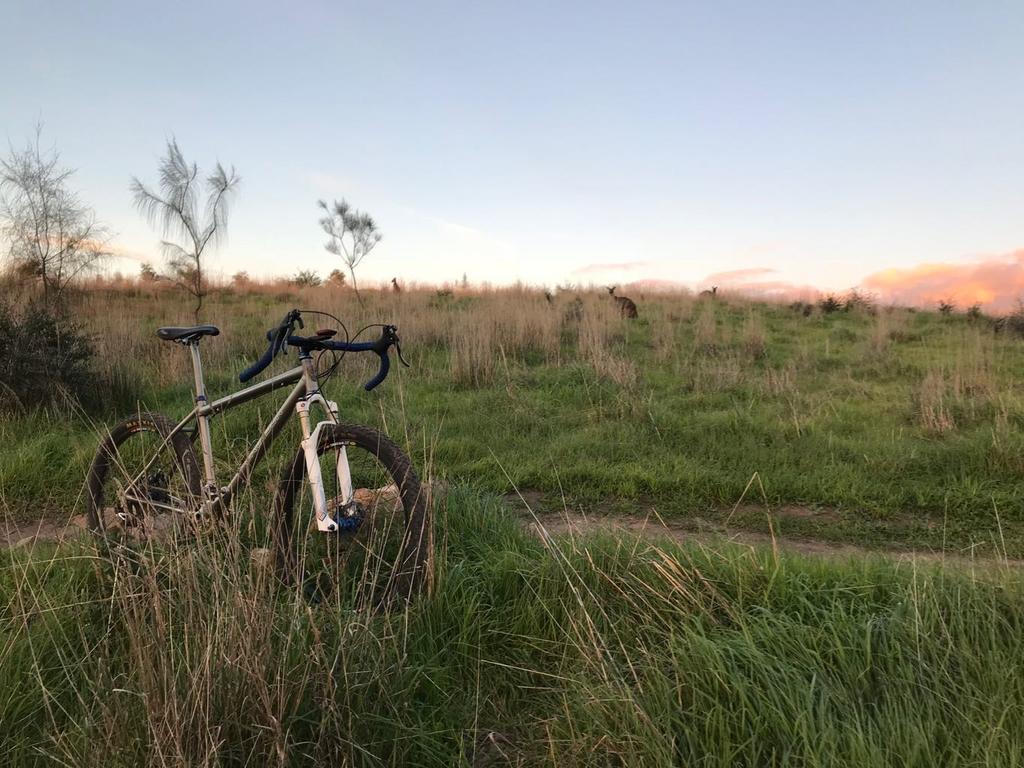 Post Your Gravel Bike Pictures-eriksenroo2.jpg