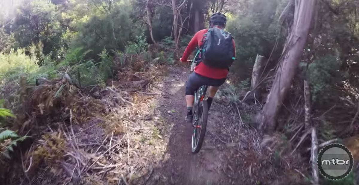 EWS Tasmania