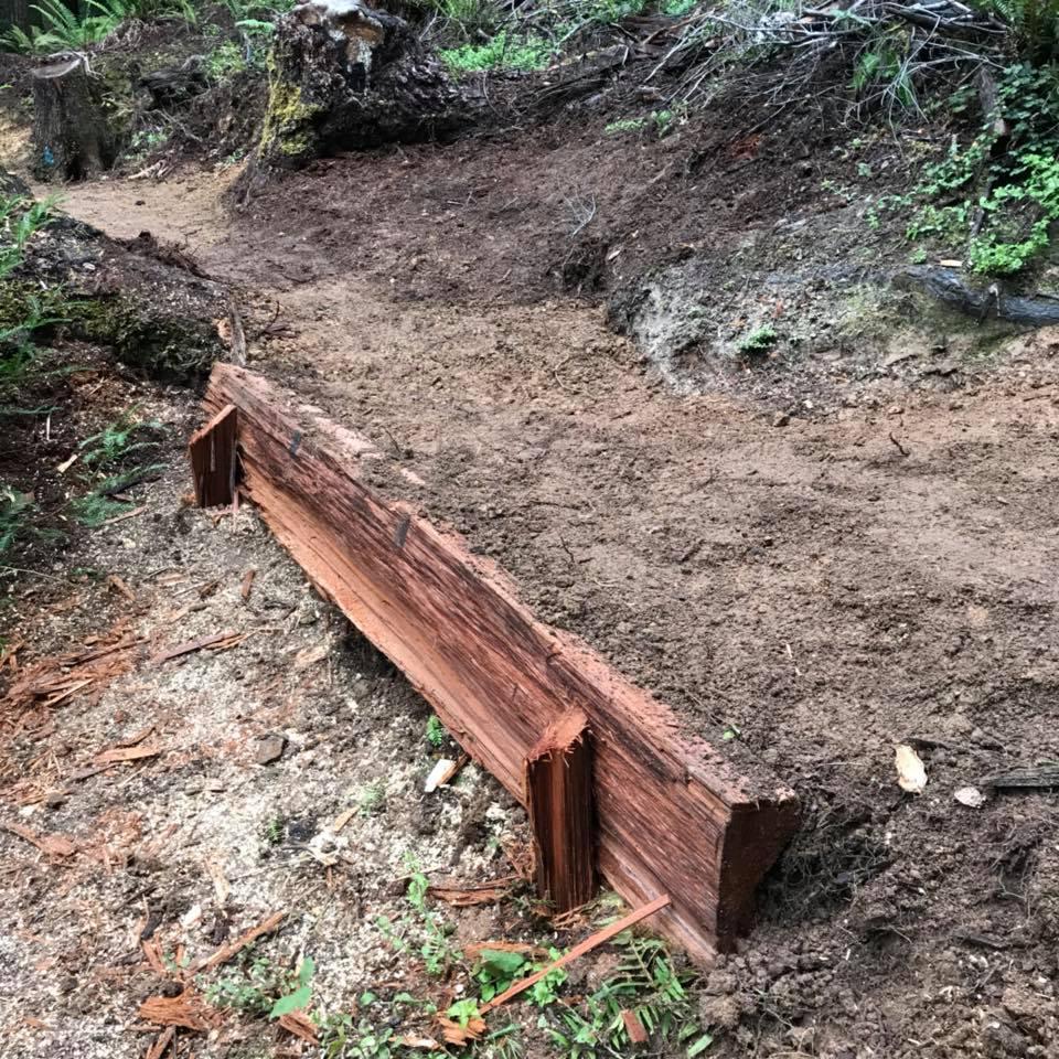 Trail conditions on Mendocino Coast 1/9/18-ez2.jpg