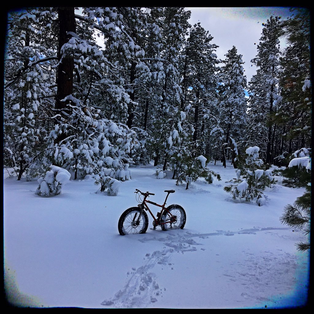 Flagstaff trail conditions.-f17759ff-a90a-4a31-9a3f-c98b46a06376.jpeg