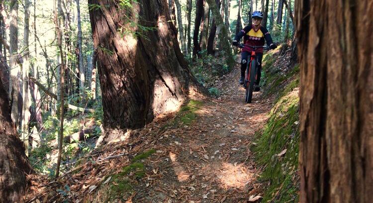 did you ride today?-f90db63a-722d-48c5-8d60-9589465e4edf.jpeg