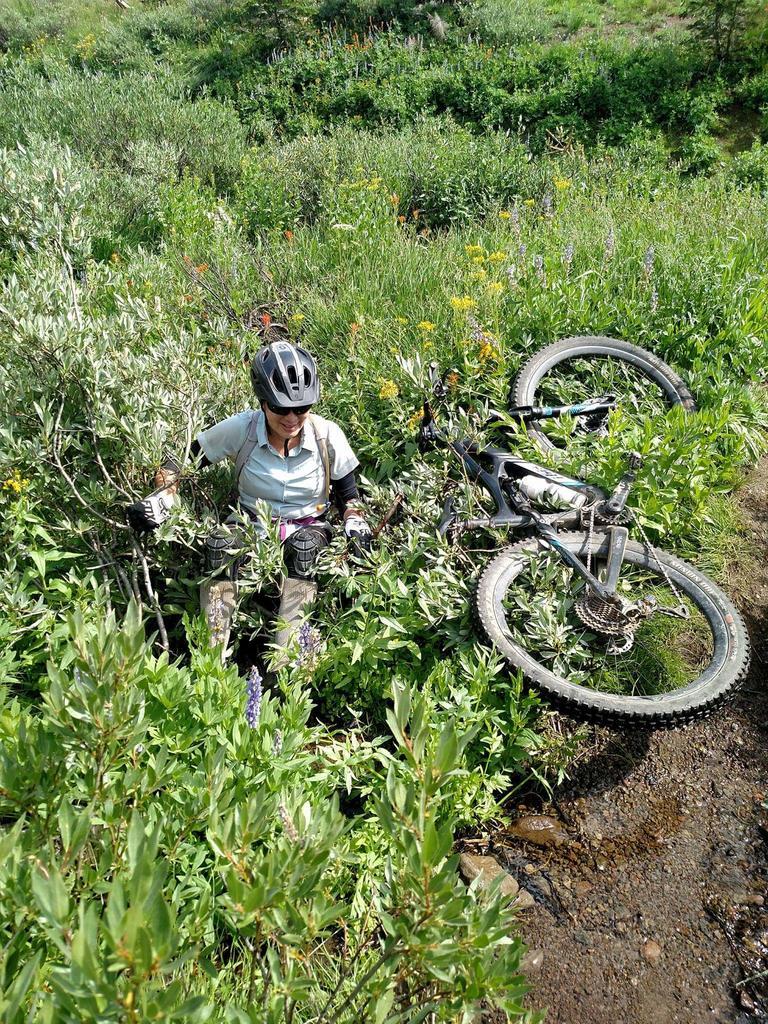 NorCal Spouse's Bikes-facebook_1520661989192.jpg