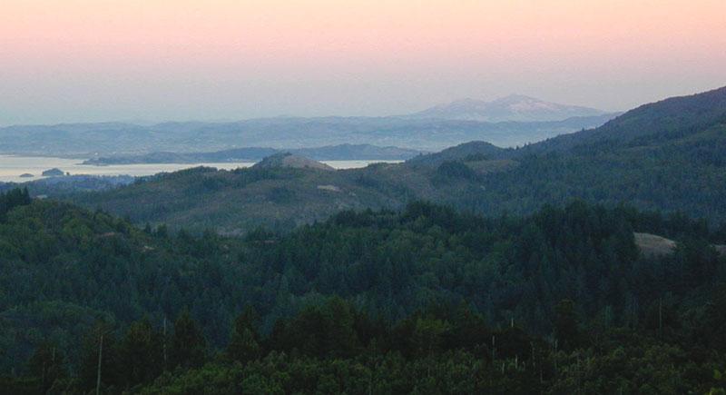 Assignment: Norcal Sunset Photos-fardiabloa.jpg