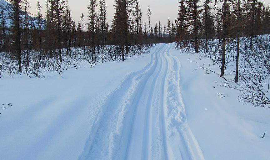 Iditarod Trail Invitational 2012-farewell-burn-iti-2011.jpg