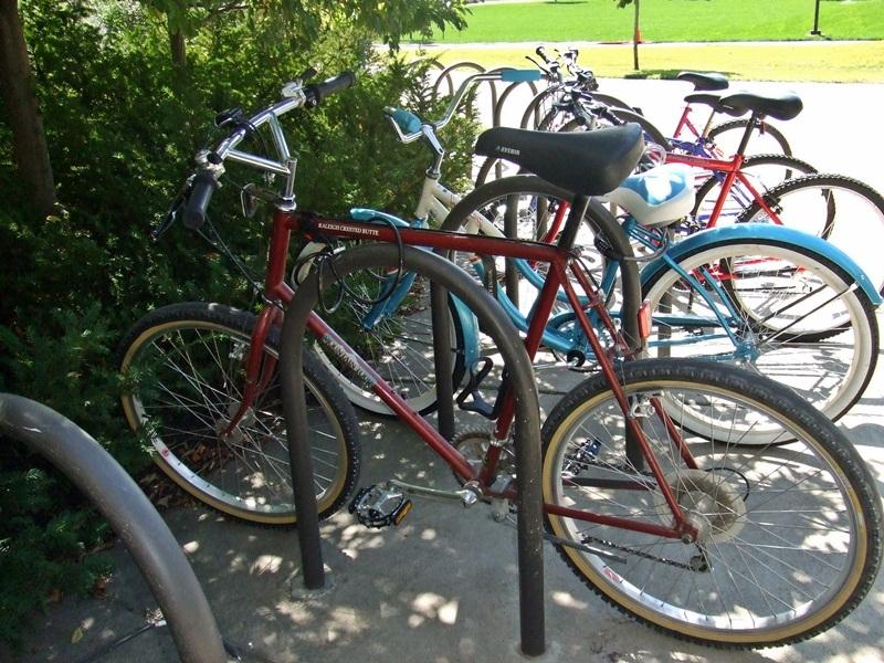 Blue Collar Classics-fat-bike-fun-sept11-013.jpg