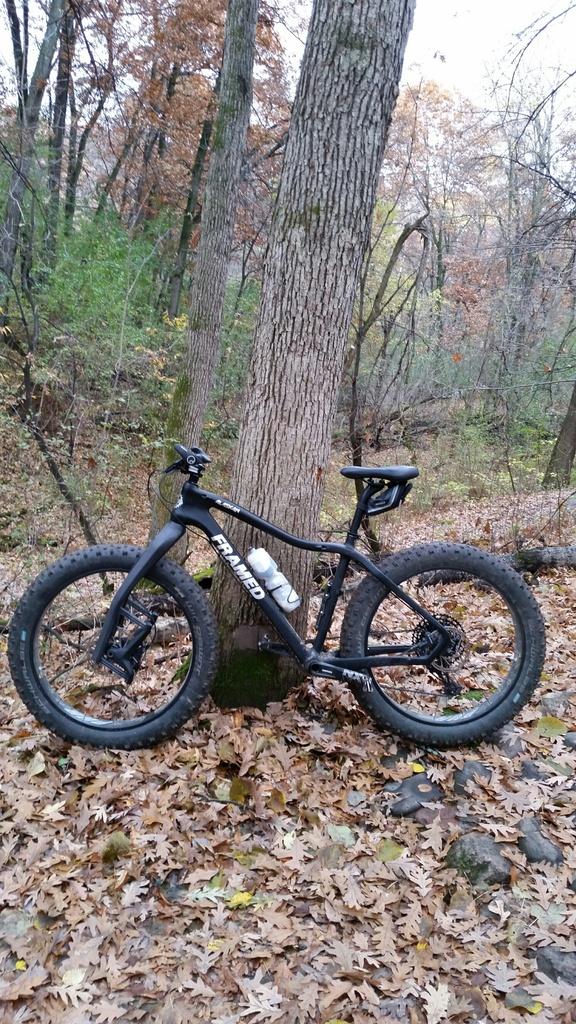 Carbon fat bike feedback-fat-bike.jpg