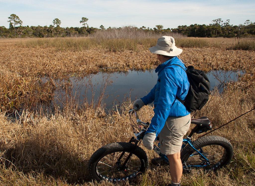 Fat Florida-fat-bikes-9.jpg
