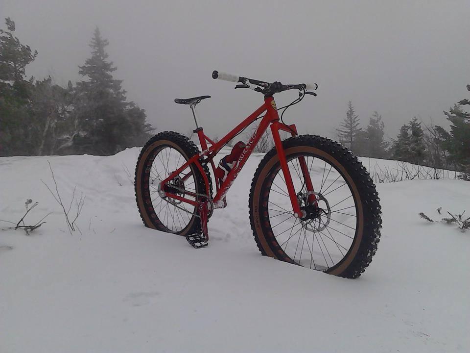 shreddy fun fat bikes?-fat.jpg