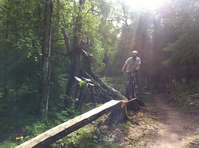 Fat Bike Air and Action Shots on Tech Terrain-fat-skinny.jpg