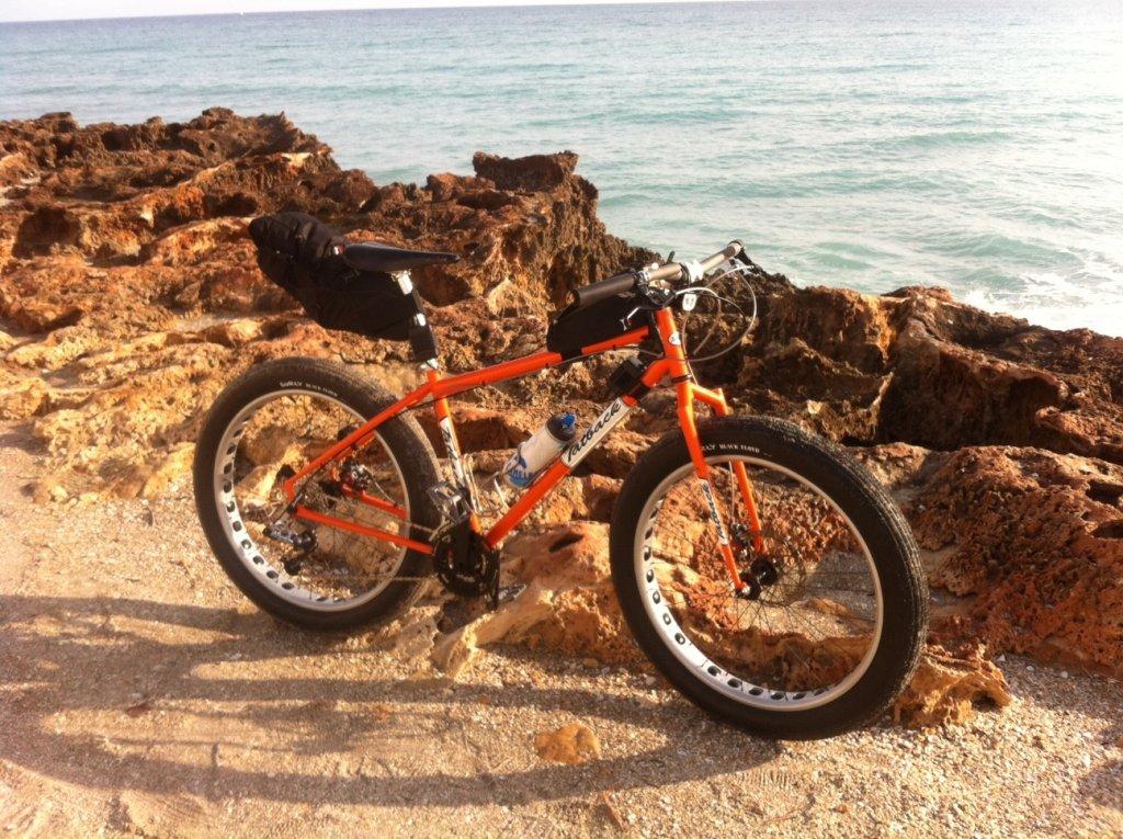 Bike specs with pics-fatback21613a.jpg