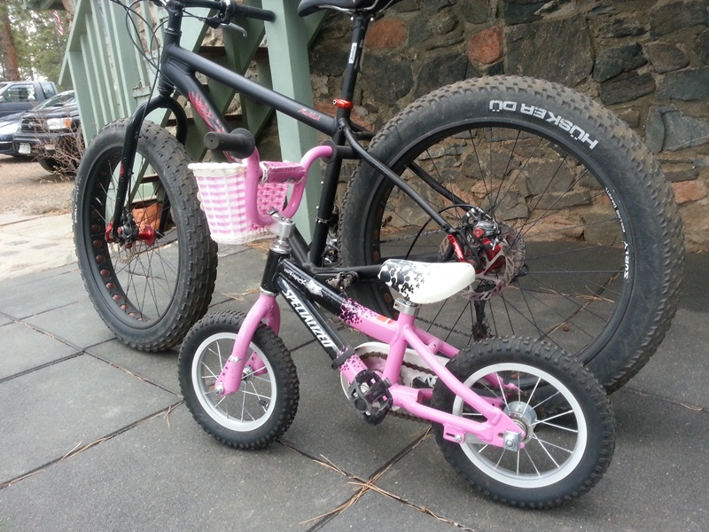 Fat Bike or Second Full Sus-fatbike.jpg