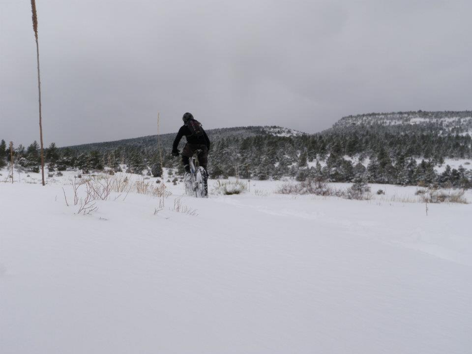 Front range fat bike ride pics-fatbike020312.jpg