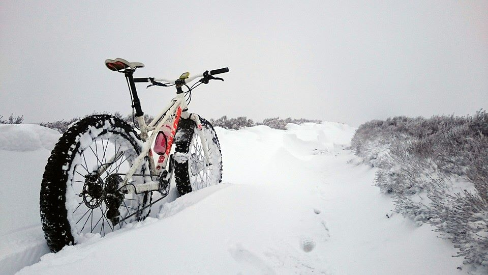 The All Mountain Hardtail Thread. Post up yours.-fatty-snow.jpg