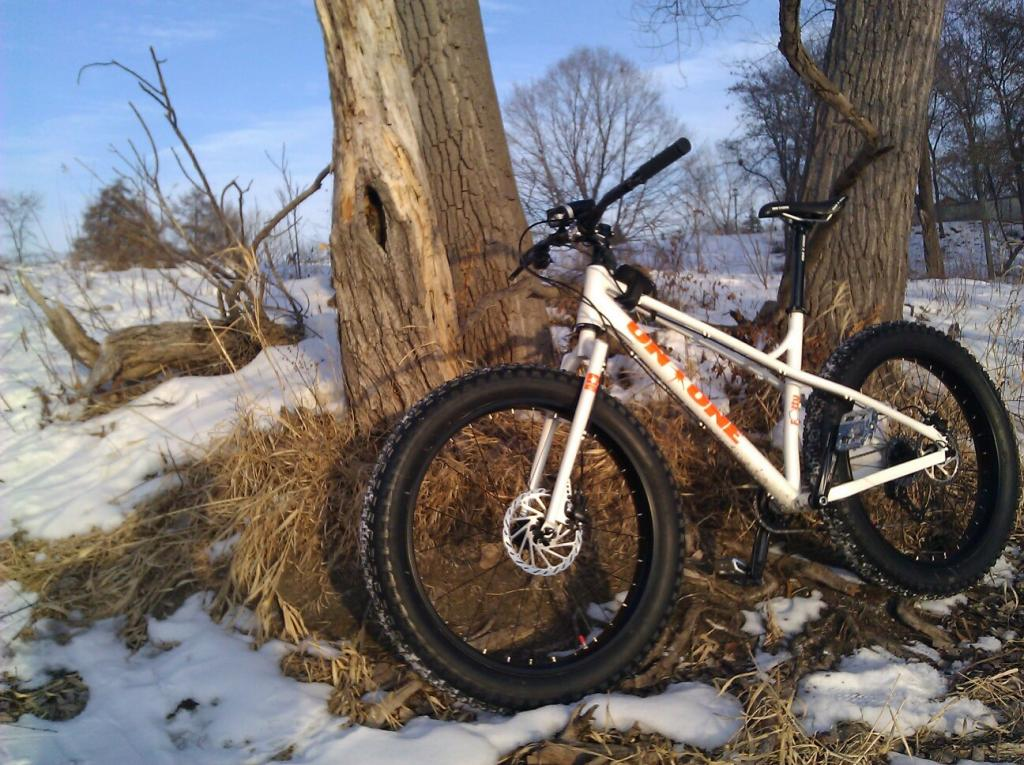 On One Fat Bike Frame-fattylakeside.jpg