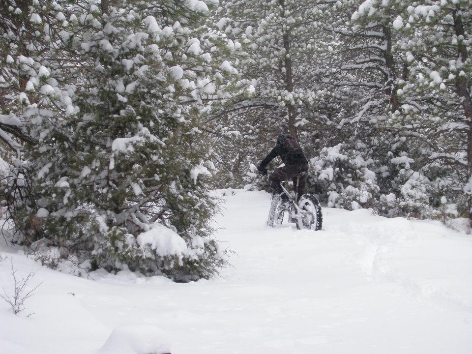 Front range fat bike ride pics-fatwashout020312.jpg