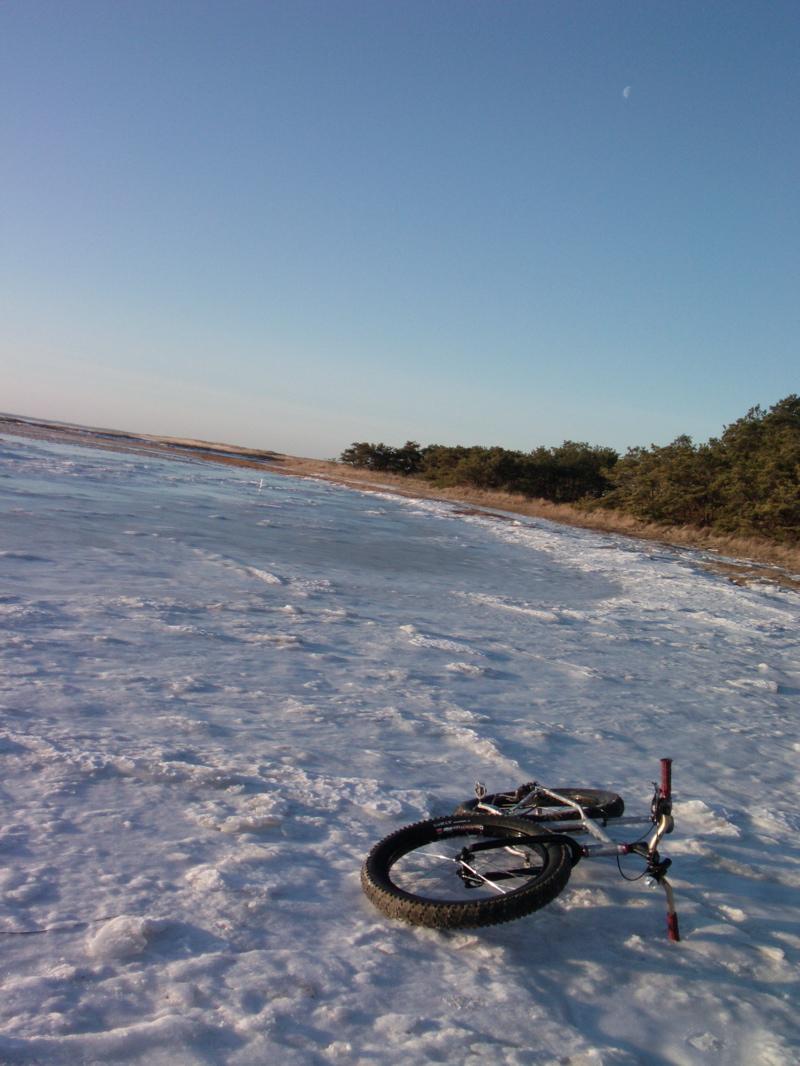 Beach/Sand riding picture thread.-fb3.jpg