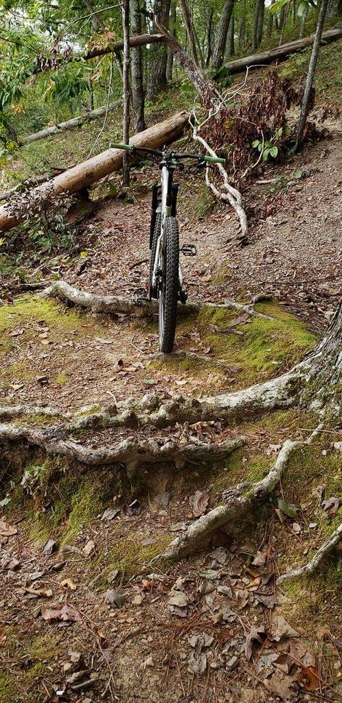 did you ride today?-fb_img_1539195938904.jpg