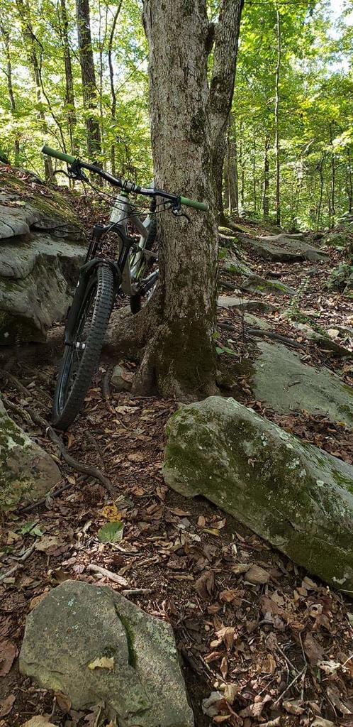 did you ride today?-fb_img_1539452618933.jpg