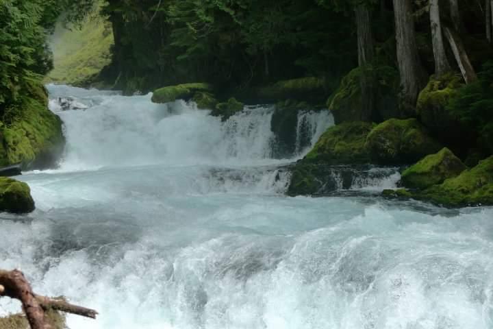 Rivers-fb_img_1574005882989.jpg
