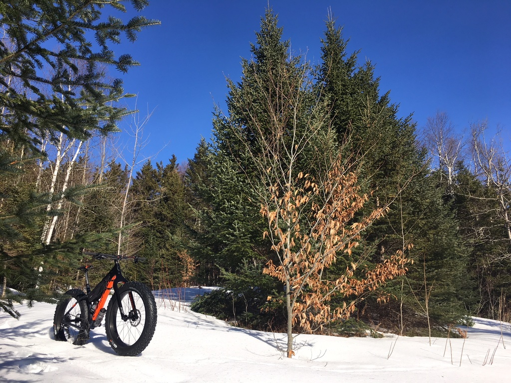 did you ride today?-feb19-2.jpg
