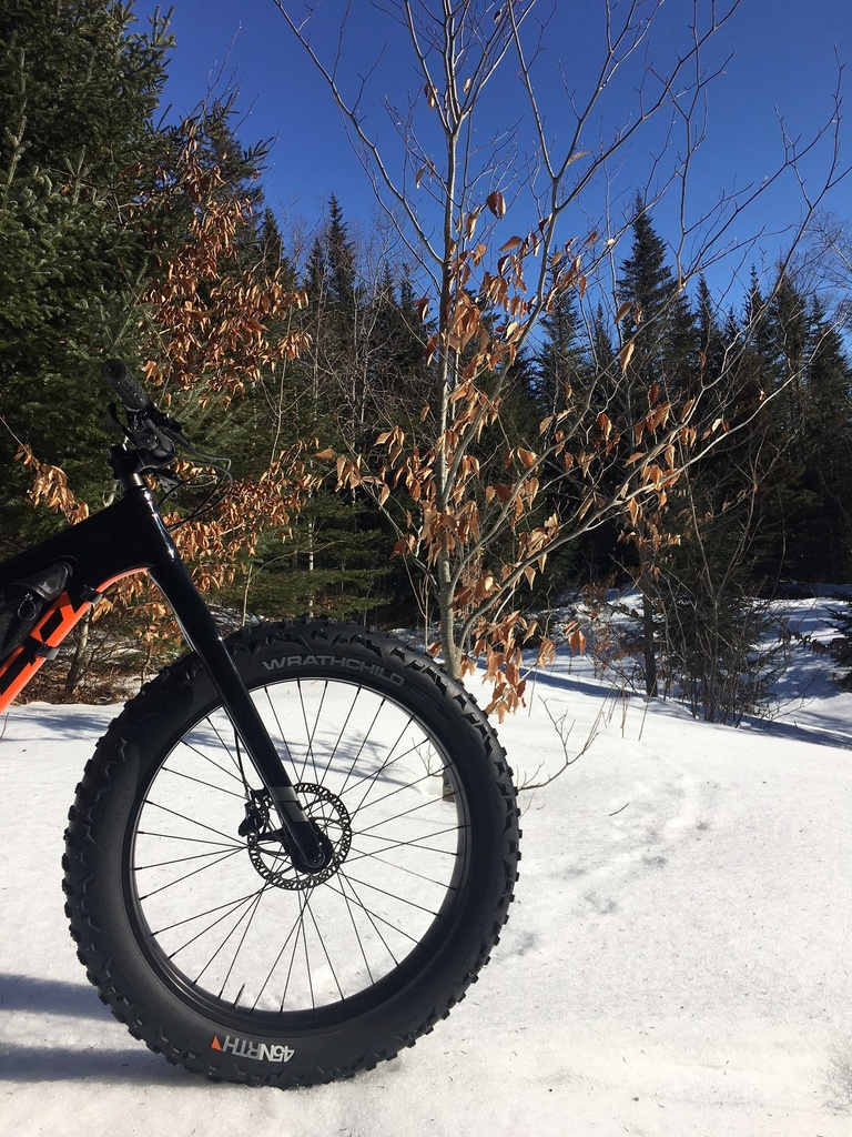 did you ride today?-feb19-3.jpg